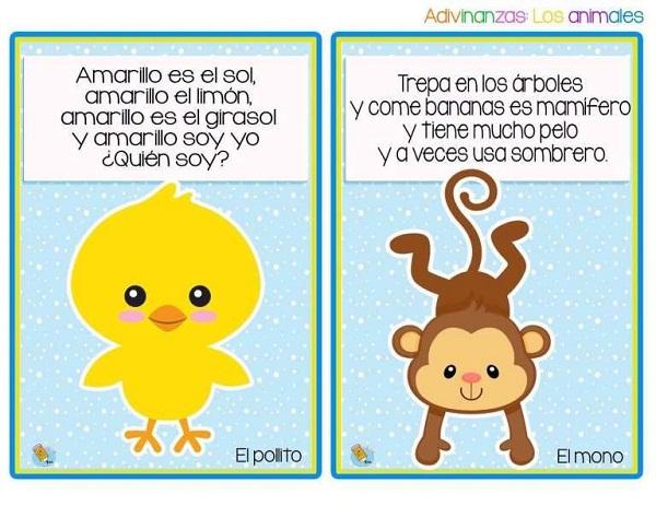 Adivinanzas de animales el pollito y el mono