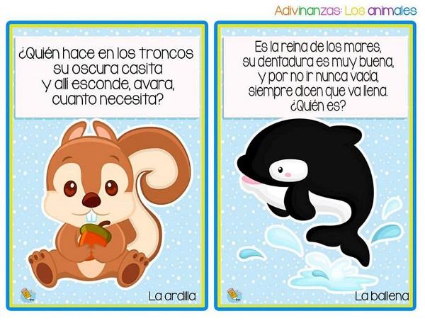 Adivinanzas de animales la ardilla y la ballena