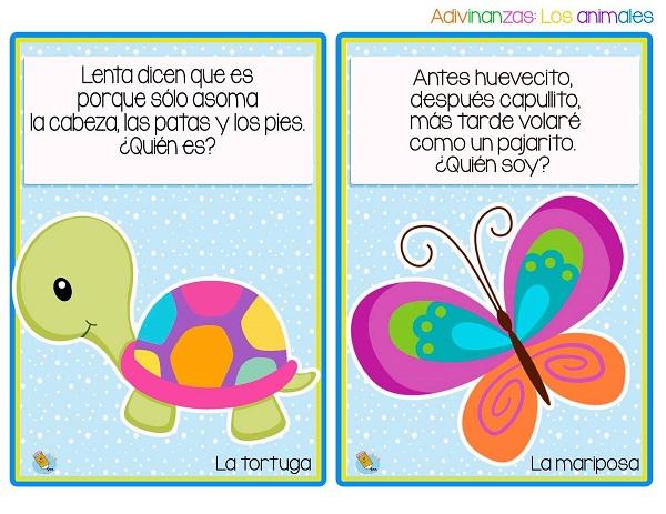 Adivinanzas de animales la tortuga y la mariposa