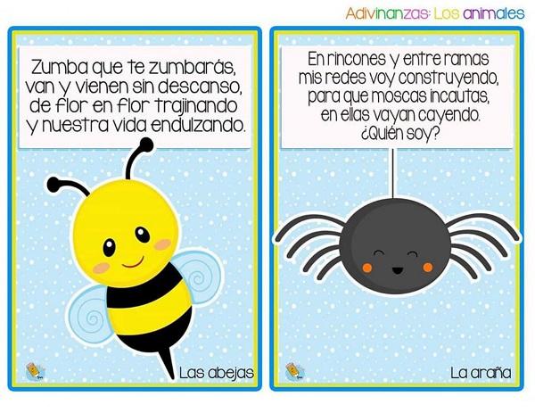 Adivinanzas de animales las abejas y la araña