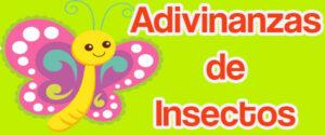 Adivinanzas de Insectos
