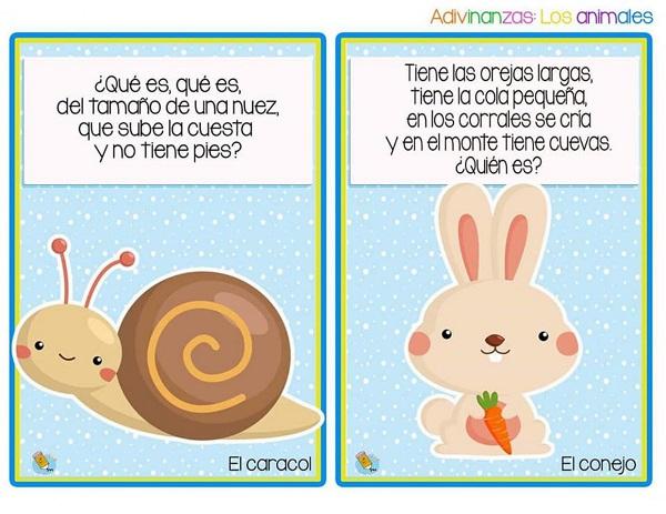 Adivinanzas el caracol y el conejo