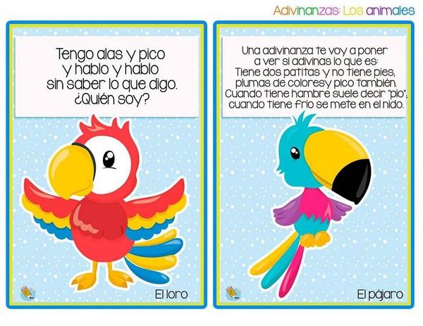 Adivinanzas el loro y el pájaro