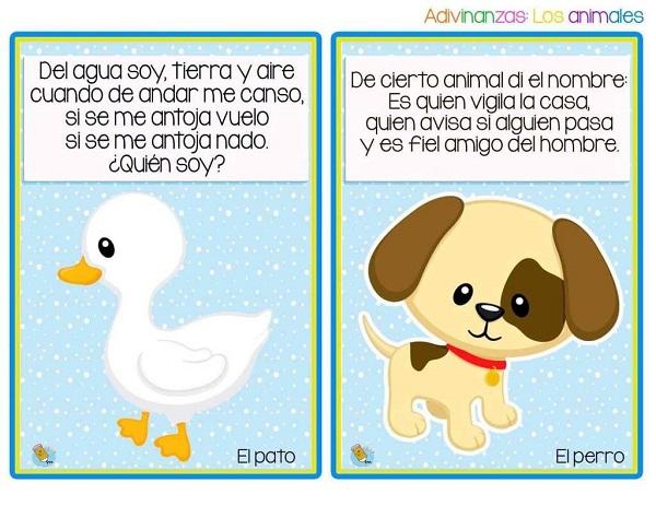 Adivinanzas el pato y el perro