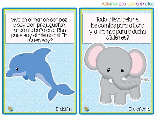 adivinanzas el delfín y el elefante